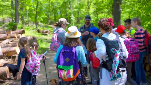 adults and kids in nature - field trip stock videos & royalty-free footage