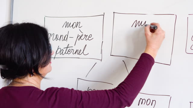 adults learning a french language - french language stock videos & royalty-free footage