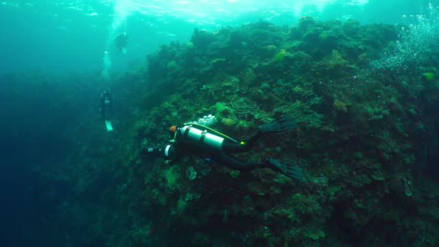 adventure diving with diver propulsion vehicle (dpv) / bohol island, the philippines - aqualung diving equipment stock videos & royalty-free footage