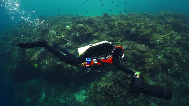 Adventure diving with diver propulsion vehicle (DPV) / Bohol Island, the Philippines
