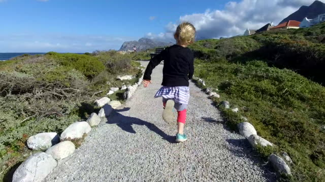 adventures at the coast - elevated walkway stock videos & royalty-free footage