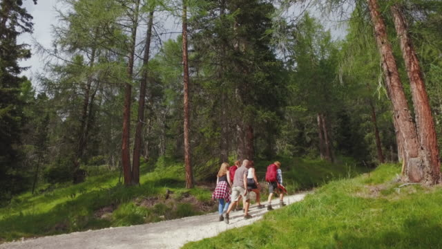 adventures on the dolomites: family together - european alps stock videos & royalty-free footage
