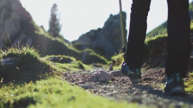 ドロミテの冒険: 女性ハイキングのグループ - トレンティーノ点の映像素材/bロール