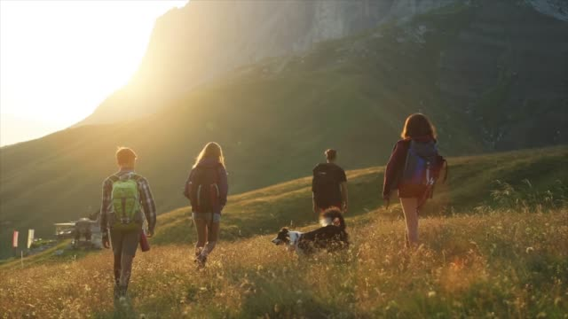 adventures on the dolomites: teenagers with dog - filmato non girato negli usa video stock e b–roll
