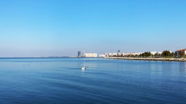ペリカンを伴うエーゲ海 - 地中海点の映像素材/bロール