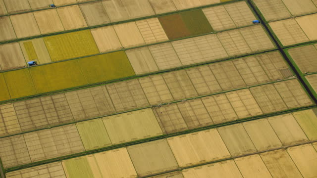 vidéos et rushes de aerial 4k shot over japan - patchwork landscape