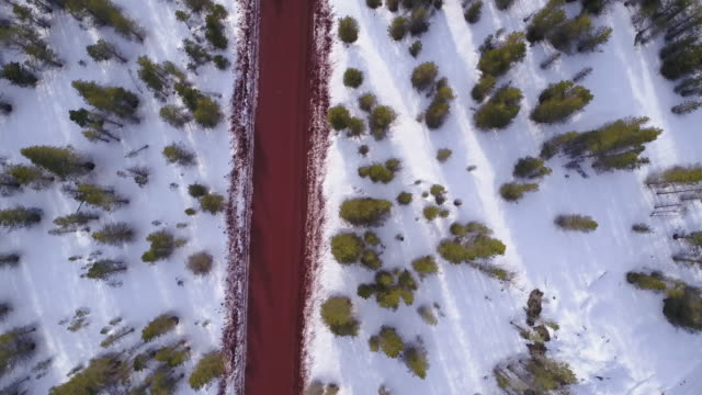 Aerial 4K: Top-Down View Following a Rural Road Through Trees and Snow