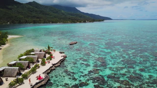 aerial: a large reef in the beautiful tropical ocean in front of the moorea island in the french polynesia - moorea stock videos & royalty-free footage