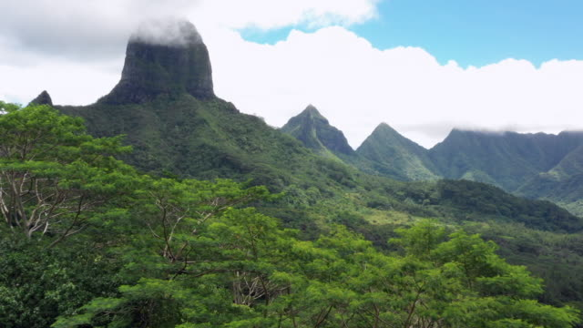 aerial: a woman skips to look at the mountains and ocean on moorea, moorea, french polynesia - スキップ点の映像素材/bロール