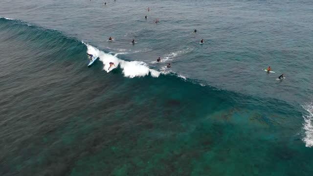 vídeos de stock, filmes e b-roll de aerial above a group of surfers surrounded by deep blue sea as two of them catch and rides a passing wave - thanburudhoo, maldives - arrebentação