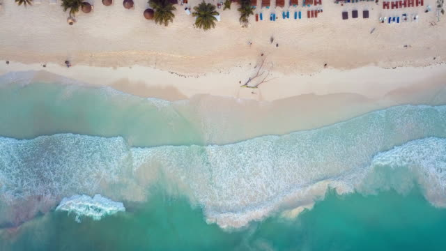 vídeos de stock e filmes b-roll de aerial: above where the ocean and beach front touch - azul turquesa