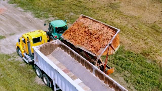 aerial action - carrot dump - kanada stock-videos und b-roll-filmmaterial