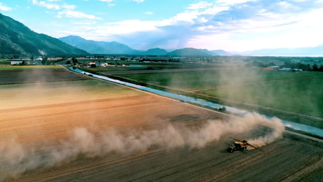 aerial action - dramatic evening light dust cloud over the fraser valley - fertilizer stock videos & royalty-free footage