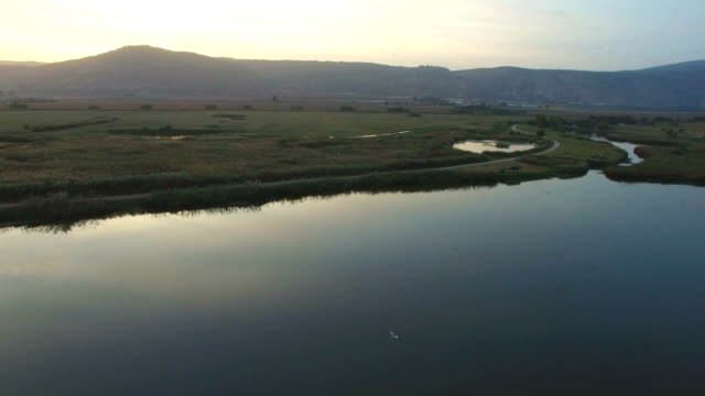 Aerial/ Air to Air  flying alongside with Common Cranes in the Hula Valley
