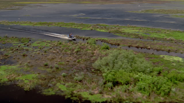 1996 aerial airboat traveling through swamp in everglades / florida - everglades national park stock videos & royalty-free footage