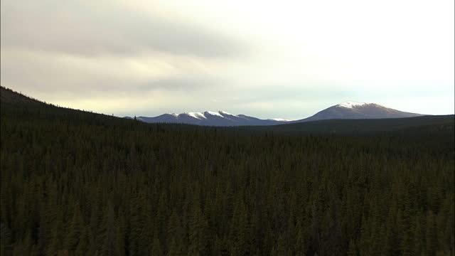 vídeos de stock, filmes e b-roll de aerial alaska usa national park landscape wilderness - ecoturismo