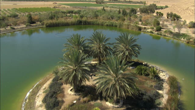 aerial artificial lake and plantations in negev desert, negev, israel - plantation stock videos & royalty-free footage