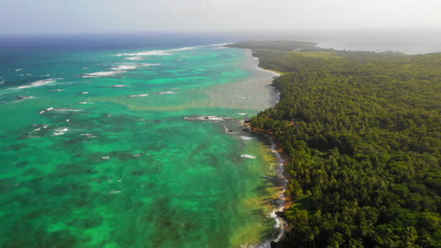 aerial ascend: forest covered island by vibrant blue ocean on sunny day - little corn island, nicaragua - nicaragua stock videos & royalty-free footage