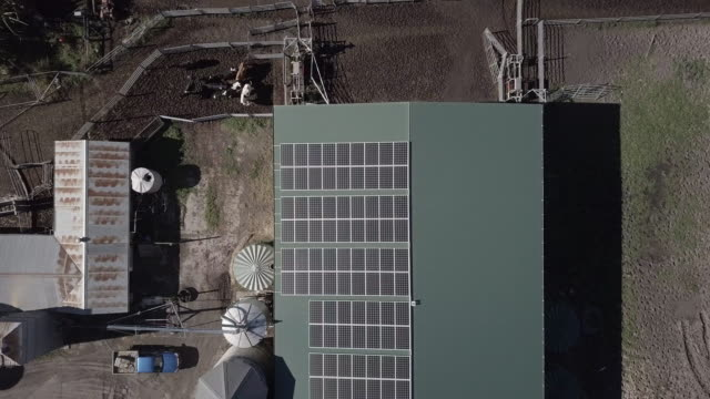 aerial ascend: solar panels on green roof on building on farm, queensland, australia - solar panel stock videos & royalty-free footage