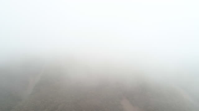 aerial ascend: thick, white fog moving over tree covered mountain - uluru, australia - tal stock-videos und b-roll-filmmaterial
