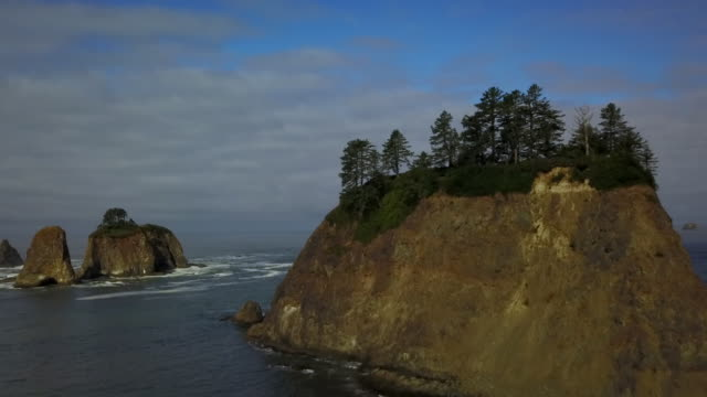 aerial ascending: sea cliff with forest on top - weathered stock videos and b-roll footage