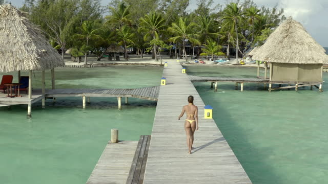 aerial ascending shot of woman in bikini walking on pier over sea, drone moving at beach - coco plum cay, belize - buttocks stock videos & royalty-free footage