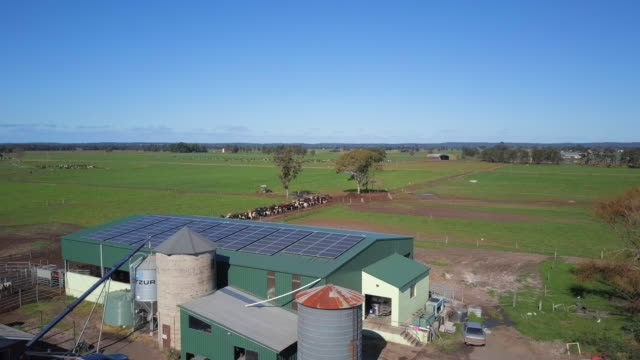 aerial ascent: diary farm and lush green fields, eastern australia, australia - diary stock videos & royalty-free footage