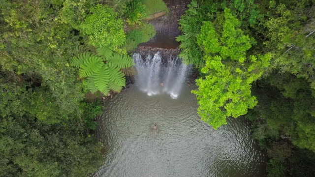 aerial ascent: people bathing under majestic waterfall among lush green, atherton, australia - waterfall stock videos & royalty-free footage