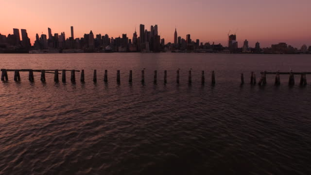 aerial at sunrise flying low and left over hudson river looking at midtown manhattan, nyc  - medium group of animals stock videos & royalty-free footage