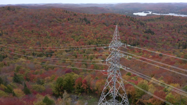 aerial autumn view of laurentian's landscape and power lines - power line stock videos & royalty-free footage