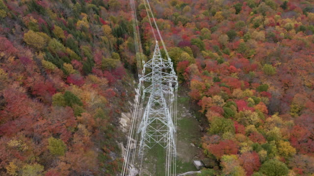 aerial autumn view of laurentian's landscape and power lines - north america stock videos & royalty-free footage