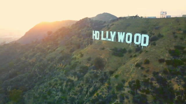 aerial backward: moving away from hollywood sign - woodland stock videos & royalty-free footage