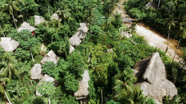 aerial backward: picturesque tree houses in exotic jungle - hispaniola stock videos & royalty-free footage