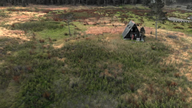 aerial backward: scenic ruinous hut next to other buildings on meadow among forest - annat tema bildbanksvideor och videomaterial från bakom kulisserna