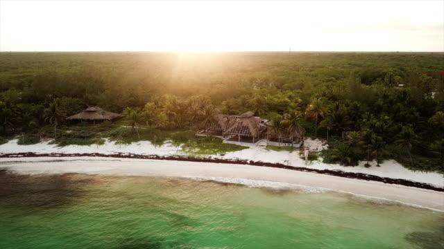 vídeos y material grabado en eventos de stock de aerial backward: vast forest area near beach in mexico - playa del carmen