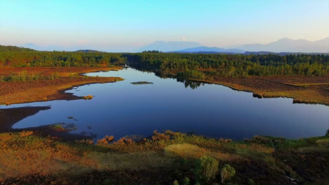 aerial: bavarian moor at sunset - moor stock videos and b-roll footage