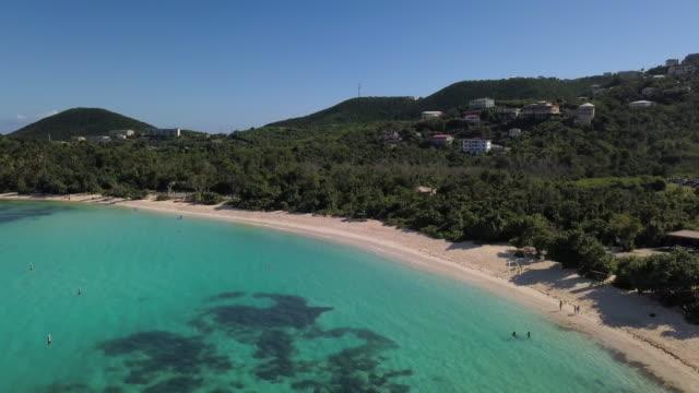 aerial: beautiful bay and sandy beach in caribbean landscape in st. croix, us virgin islands - tropischer baum stock-videos und b-roll-filmmaterial