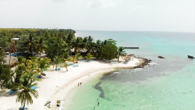 vídeos y material grabado en eventos de stock de aerial: beautiful beach by the ocean with white sand and palm trees - tumbona