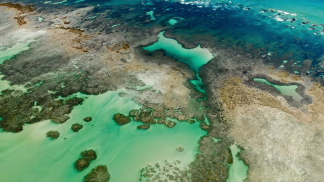 aerial: beautiful coral reef in bright blue ocean in porto de galinhas, brazil - reef stock videos & royalty-free footage