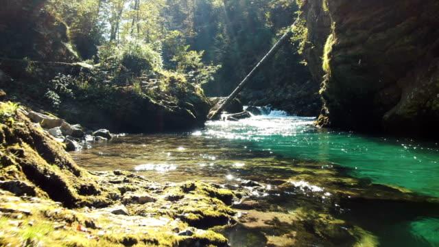 aerial / beautiful emerald color water in vintgar gorge - slowenien stock-videos und b-roll-filmmaterial
