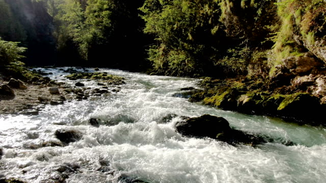 aerial / beautiful forest stream - slow motion - stream stock videos & royalty-free footage