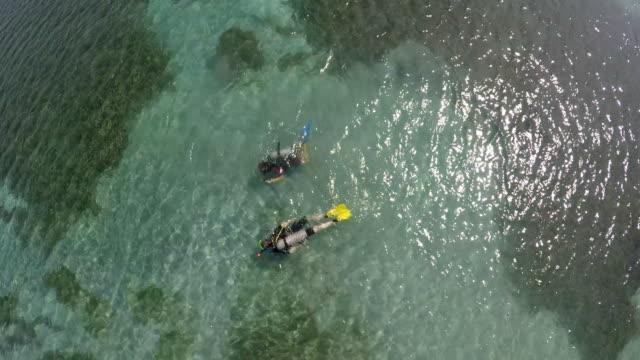 vídeos y material grabado en eventos de stock de aerial birds eye view of scuba divers / grenada, carribbean - antillas occidentales