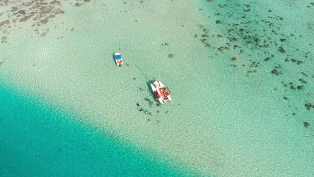 aerial: boat with vacationers swimming with fish in tropical water in moorea, french polynesia - moorea stock videos & royalty-free footage