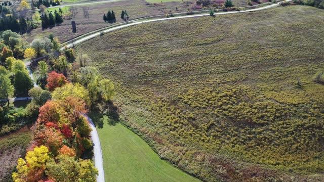 aerial bronte creek provincial park in autumn, oakville, canada - ontario canada stock videos & royalty-free footage