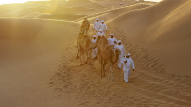 aerial camels being led by handlers across desert - saudi arabia stock videos & royalty-free footage