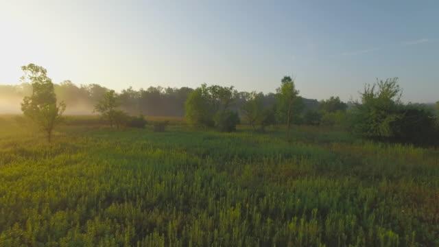 4K Aerial Canada: Morning Mist