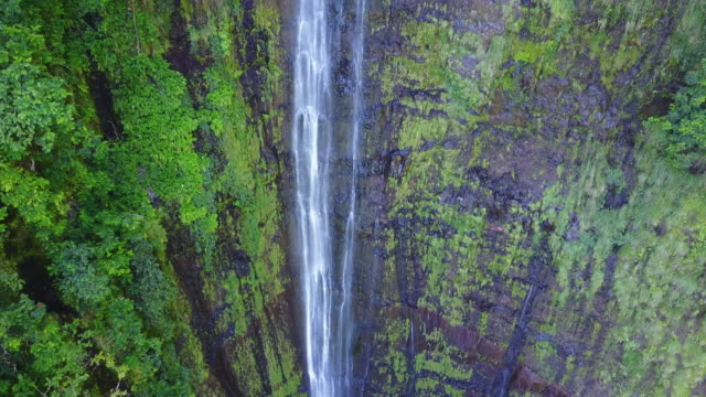 aerial, cascading waterfall in hawaii - terreno video stock e b–roll