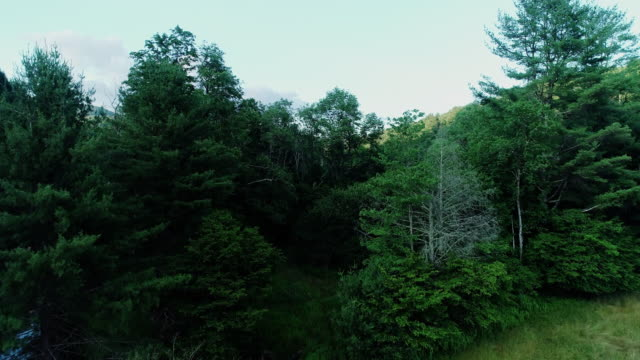 aerial catskills mountains river sunset summer - appalachian mountains stock videos & royalty-free footage