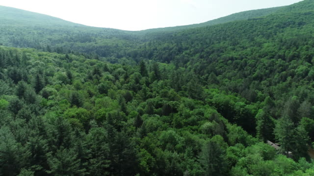 aerial catskills mountains road cars river forest summer new york - appalachian mountains stock videos & royalty-free footage