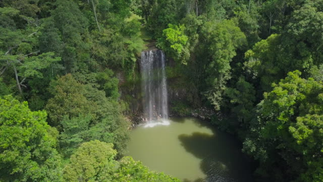 aerial circling: people bathing under majestic waterfall among lush green, atherton, australia - strauch stock-videos und b-roll-filmmaterial